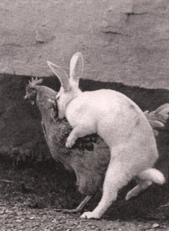 That's where Easter eggs come from ! Happy Easter :)