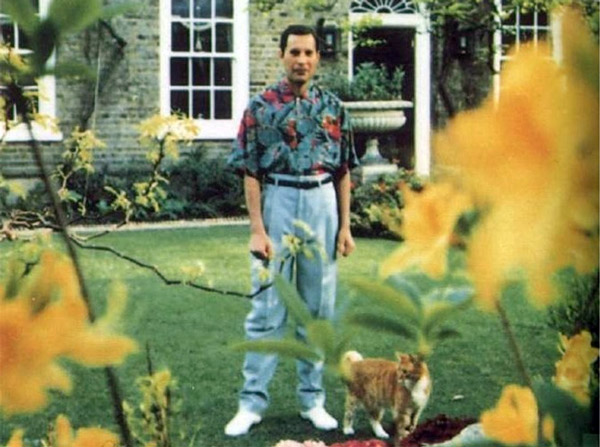 Last known photos of famous people - Freddie Mercury